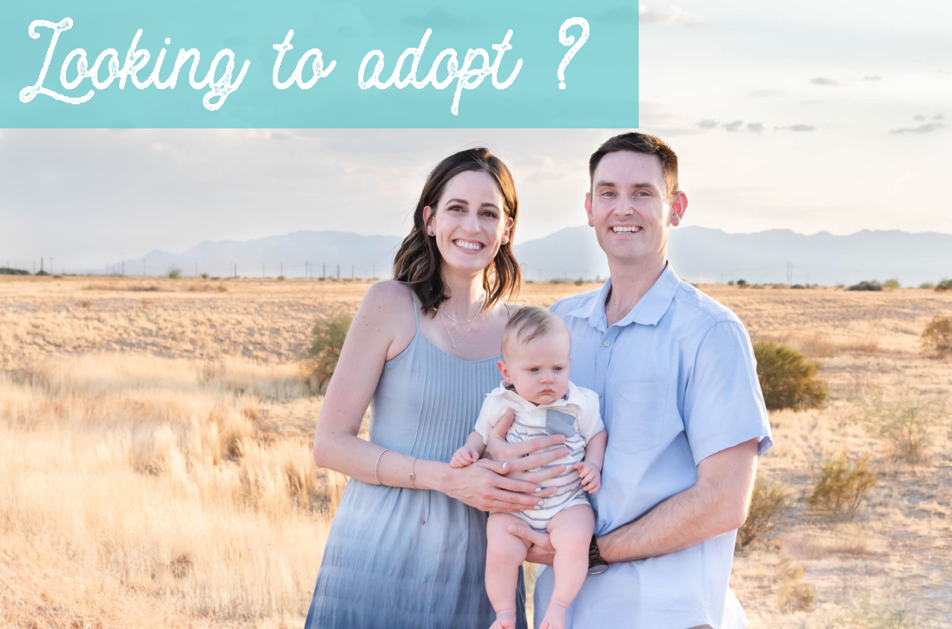 Looking to adopt?